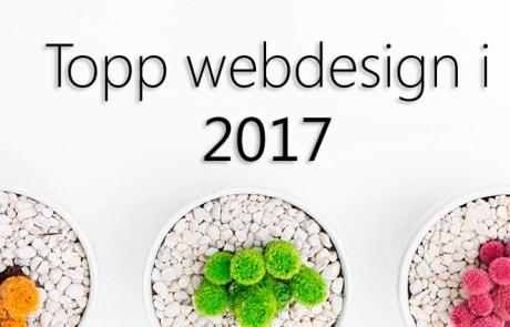 topp webdesign